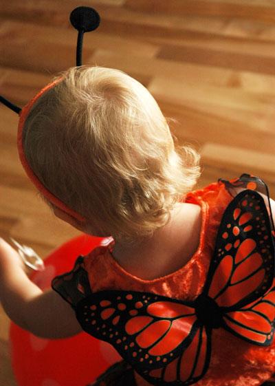 Buterfly wings_web